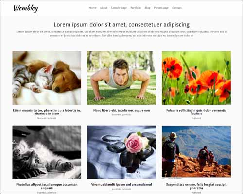Wembley_Free_WordPress_Theme