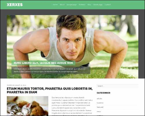 Xerxes_Free_WordPress_Theme