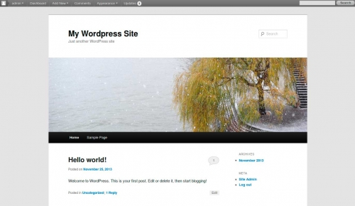 wordpress-through-the-ages-30