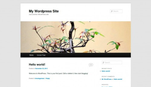 wordpress-through-the-ages-32