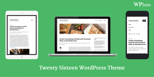 Twenty-Sixteen-WordPress-Theme-2016